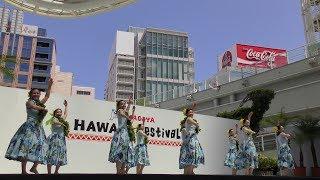 JST NAGOYA HAWAI'I Festival 2017 2017年5月26,27,28日(金,土,日)愛...