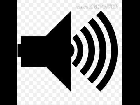 Awkward silence crickets sound - sound effect