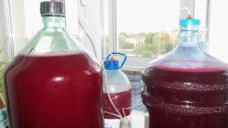 Домашнее ягодное вино