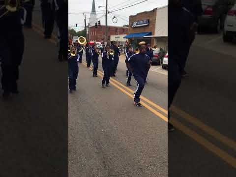 "Francis Marion School Sounds of Success Marching Ram Band 2017- ""Feels Good"""