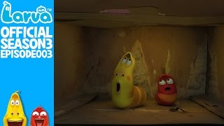 official box - larva season 3 episode 3