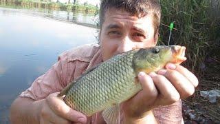 Рыбалка на карпа и карася на кукурузу ! Улов есть ! fishing videos(Привет всем рыбакам ! Поехали ночью с братом на рыбалку ! Где то в три часа ночи так шикарно клюнуло ! Карп,..., 2015-07-28T19:14:40.000Z)