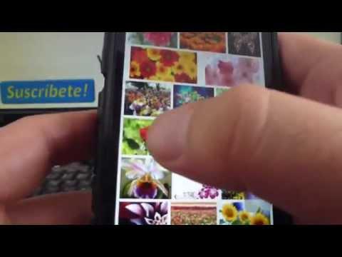 Cómo descargar fotos del iPhone 5S 5C 5 4 iOS 7 español Channeliphone