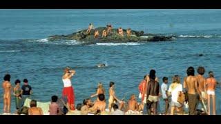 Goa || Complete Travel Guides to Explore Goa India