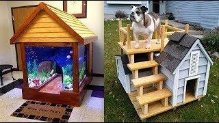 पालतू जानवरों के लिए बनाए गए 5 सबसे आलीशान घर। Top 5 Most Amazing Pet Houses.