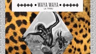 Waya Waya - Tribu