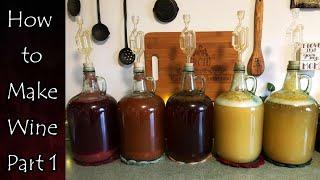 Wine Making: Part 1