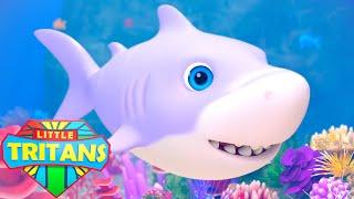 Baby Shark Song | Sing & Dance | Baby Shark Family | Nursery Rhymes & Kids Songs - Little Tritans