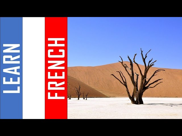 Learn French in Namibia I  500 Verbs and Phrases