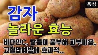 [#감자효과] 감자의 놀라운 효능 9가지 (비타민C, …
