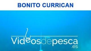 Gambar cover VIDEOS DE PESCA: BONITO CURRICAN DE FONDO 2018