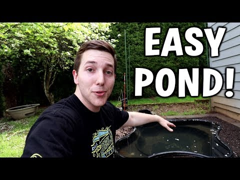 Beginner Backyard Pond Setup // Pond Season 2 Ep. 1