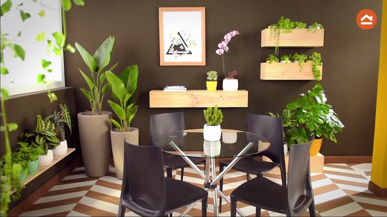 Decora tu casa con plantas de interior youtube for Vestir una pared con plantas