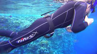 Blowing rings are always satisfying. Freediving Sharm