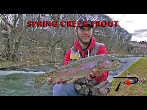 Winter Trout on Pennsylvania's Spring Creek