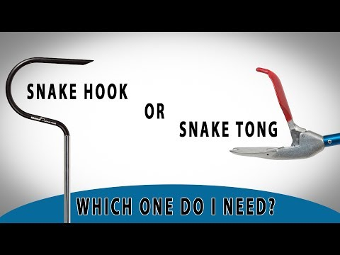 Snake Hook Vs Snake Tong   Which One Should I Choose?