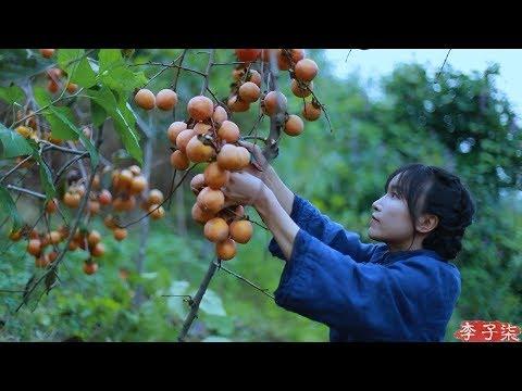 吊柿饼|It's a red mountain, and in the fall, it's natural to make some sweet persimmons.|Liziqi channel