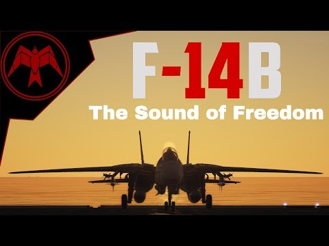 DCS F-14B Tomcat: The Sound of Freedom