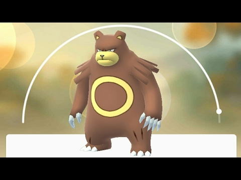 Evolving Teddiursa into Ursaring Pokemon Go GEN 2 - YouTube  Evolving Teddiu...
