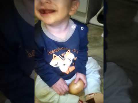 "Meu bebê na gargalhada pela batata ""pita"""