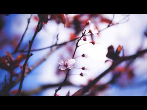 Chopin, etude in A minor, Op . 25 No. 11 'Winter Wind' - intermezzo Ep.15