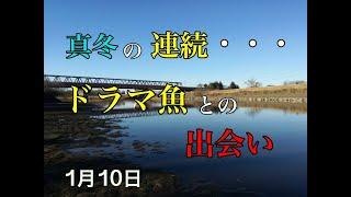 バス釣り「真冬の連続・・・」茨城県 小貝川