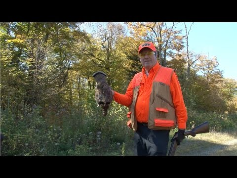 New Hampshire Grouse Hunting At Lopstick