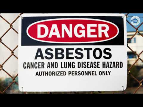 Asbestos Safety & Management in Dublin
