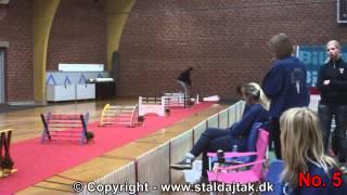 Danish Championships 2012 in Rabbit Hopping - Elite straight - Top 10