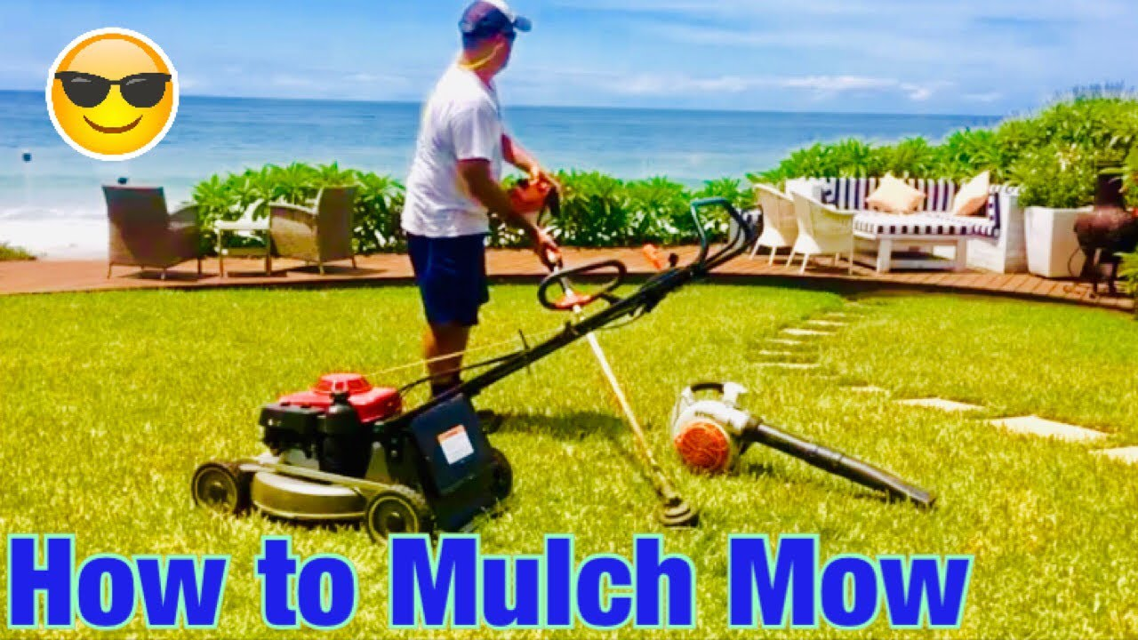Lawn Mowing Using A Honda Self Propelled Lawn Mower   Mulching Plug Fitted    YouTube