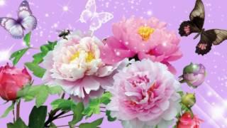 Губин цветы дарю