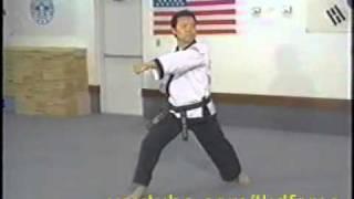Taekwondo Poomse 1 (Taegeuk Il Jang)
