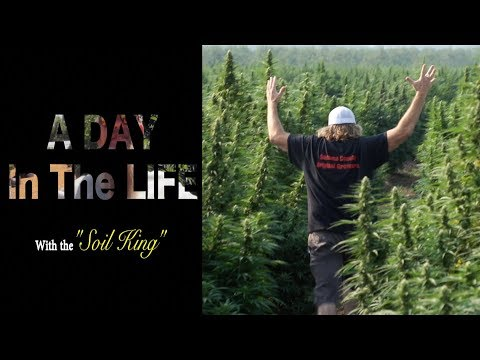 A Day In The Life - Mr B's Greentrees