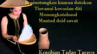 Bontugo Tadau Kaamatan[1].flv