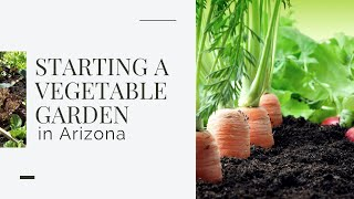 Starting a Vegetable Garden in Arizona