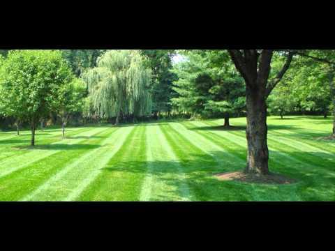 Best Lawn Mowing Service in Akron Ohio 330-896-5640