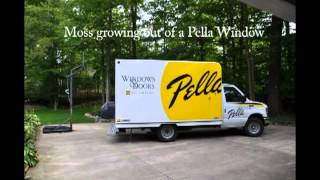 Pella Proline Window Failure