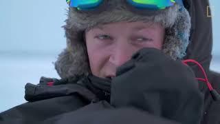 Male Polar Bear Fight Club - Ep. 2   Wildlife: The Big Freeze