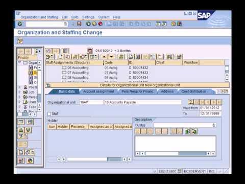 SAP HCM (HR) Overview