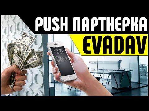 Партнерская программа Evadav. Легкий заработок на Push-уведомлениях через партнерку
