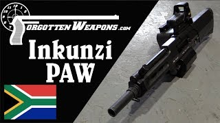 Inkunzi PAW aka Neopup - 20mm Direct-Fire Grenade Launcher
