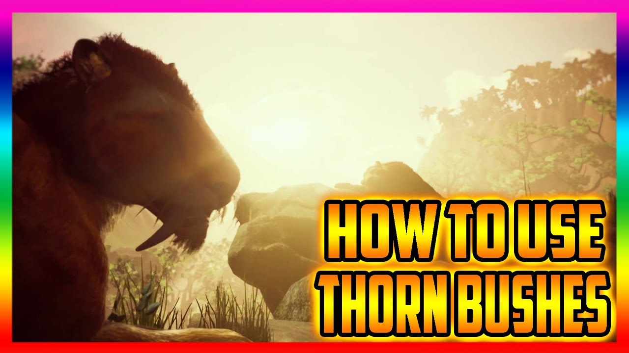 Ancestors The Humankind Odyssey How To Use Thorn Bushes