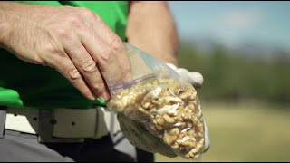 Golf Nutrition: Better Golf Course Snacks