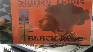 Shirley Davis & The SilverBacks  What Can I Do