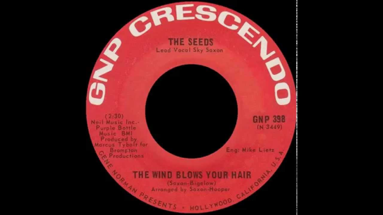 the-seeds-the-wind-blows-your-hair-gnaf-utopie