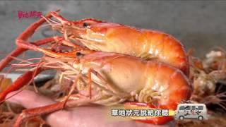 草地狀元-泰國蝦料理南霸天VS阿公種的總統級葡萄搶先看(20160215播出)