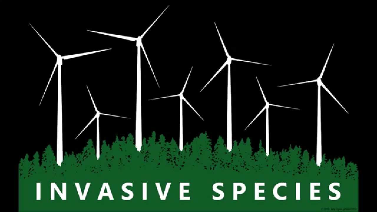 Anti Wind Turbine Slogans Downloadable Images Youtube