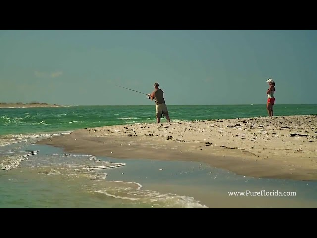 Experience Punta Gorda  Englewood Beach Florida - Food and Travel Magazine