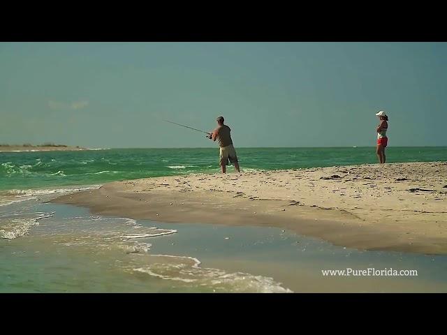 Experience Punta Gorda  Englewood Beach Florida - Food and Travel Magazine