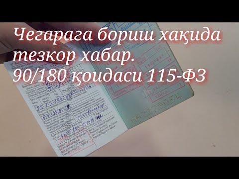 90/180 115-ФЗ Кирди чиқти қоидаси. Границага чикиш янги конун 2019г Азия24